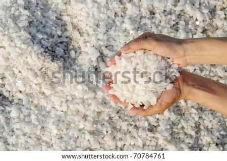 Sea salt crystals in hand. - stock photo