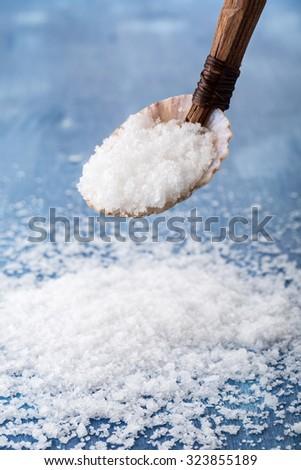 Sea salt ( flower of salt / fleur de sel ) in a spoon from seashell - stock photo