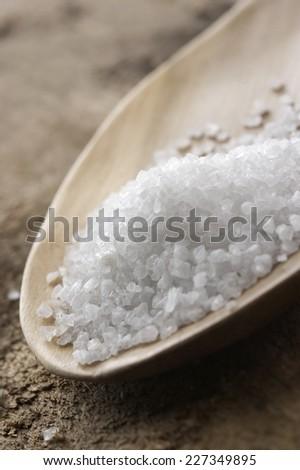 sea salt in wooden spoon - stock photo
