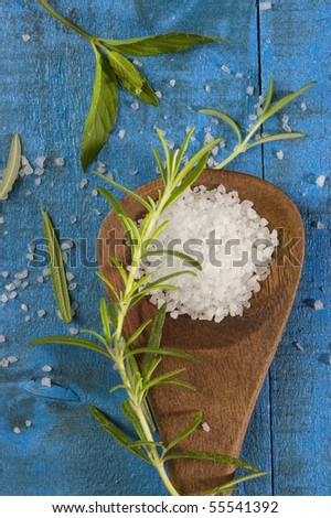 sea salt with herbs in a wooden spoon - stock photo