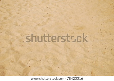 sea sand with footprints - stock photo