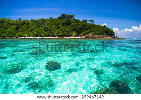 Sea Scene Marine Fantasy  - stock photo