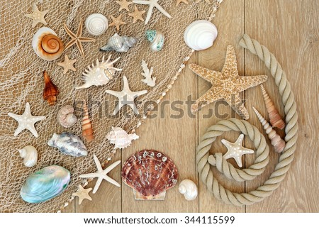 Sea shell abstract background with fishing net and rope on old oak wood. - stock photo