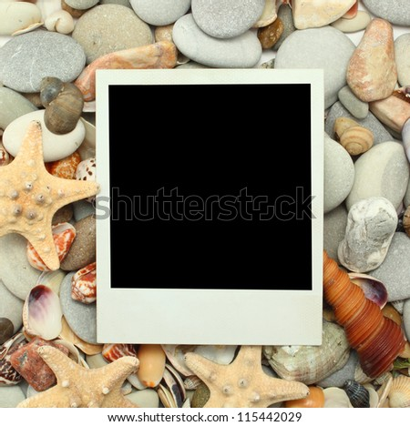 Sea shell background vintage instant photo - stock photo