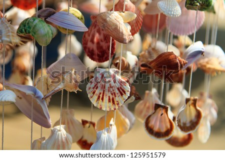 Sea shell curtain selective focus - stock photo