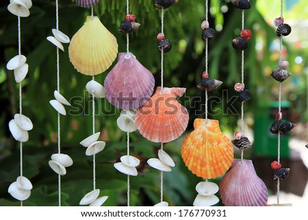 Sea shell decor product  - stock photo