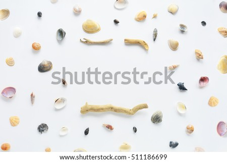 Sea shell mock up on white background. Flat lay composition with natural objects