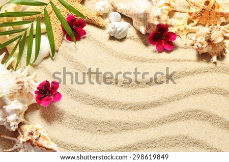 Sea shells and flowers on the  sand background. Summer beach. - stock photo