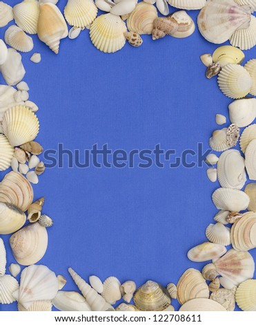 sea shells and sea rocks on the blue paper background - stock photo