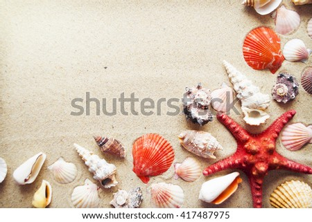 Sea shells and starfish with sand as background - stock photo