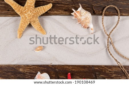 sea shells and starfish with sand, summer background.