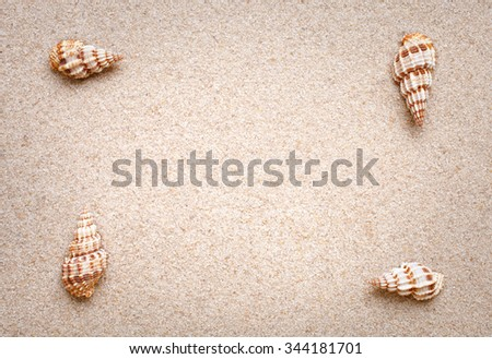 Sea shells frame on sand.  Summer beach background. place for text - stock photo