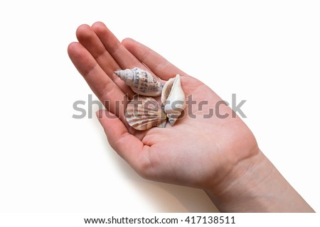 Sea shells in woman's hand