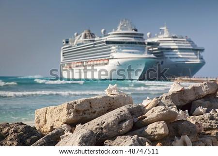 Sea Shells on Grand Turk Island - stock photo