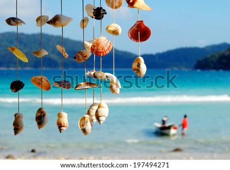 Sea shells on the sea shore. - stock photo