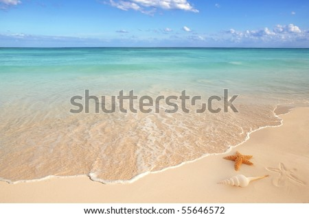 sea shells starfish on tropical sand turquoise caribbean summer vacation travel icon - stock photo