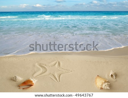 sea shells starfish on tropical sand turquoise caribbean summer vacation travel icon [Photo Illustration] - stock photo