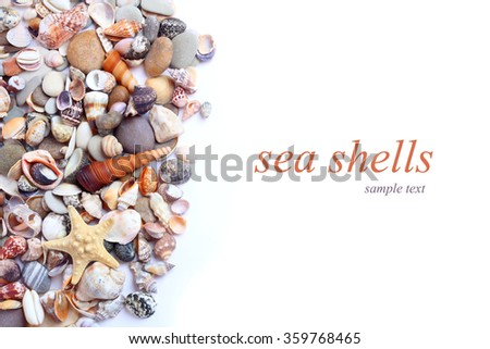 sea shells stones - stock photo