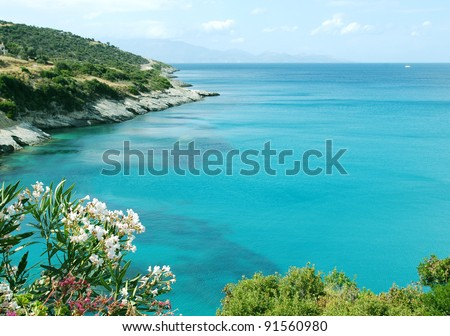 Sea shore in Greece with oleander flower - stock photo