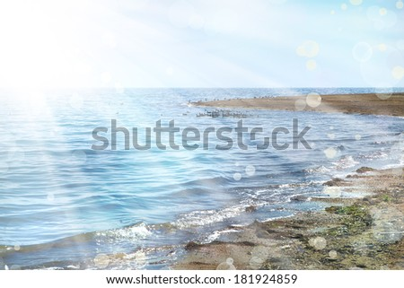 sea shore with little birds, summer landscape - stock photo