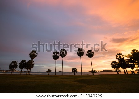 Sea shore with sugar palm trees in twilight time
