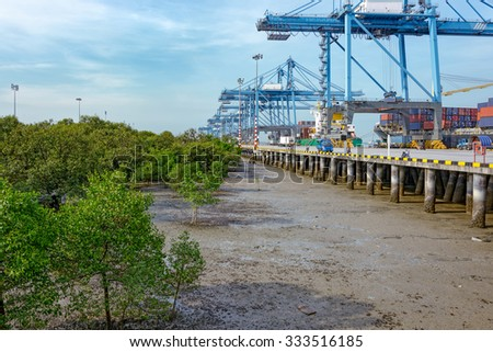 Sea-side mangrove forest at low tide along a commercial container terminal. Northport Malaysia Wharf, Pelabuhan, Klang, Malaysia - stock photo
