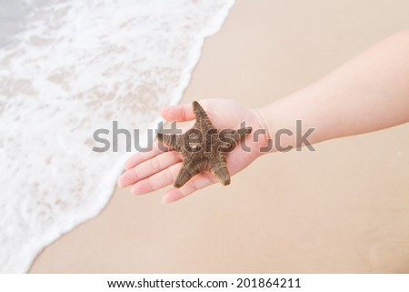 Sea Star with hand on beach background - stock photo