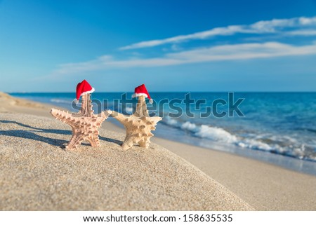 Sea-stars couple in santa hats walking at sea sandy beach. Holiday concept for New Years and Christmas Cards. - stock photo