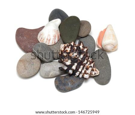 sea stones and shells - stock photo