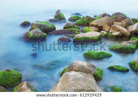 sea stones with green seaweed, blue clear water, greenery, cloudy day,  smoky waves low shutter speed