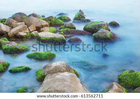 sea stones with green seaweed, blue clear water, greenery, cloudy day,  smoky waves low shutter speed, sea level rise