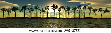 Sea sunset. Panorama. Palm trees against the sky. - stock photo