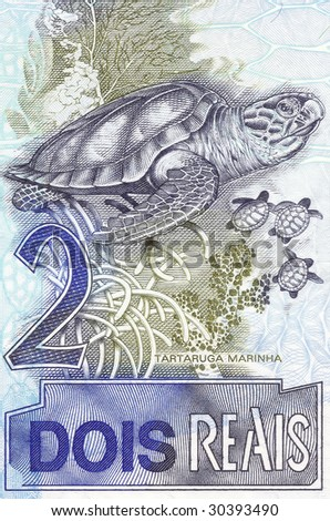 sea turtle on 2 real banknote from brazil