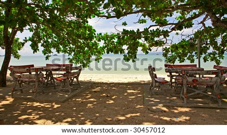 Sea view cafe in the shadow of trees