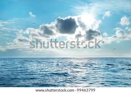 Sea with blue water, sky and clouds. Flying seagulls above the seascape - stock photo