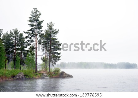 Sea with conifer trees in fog on Swedish east cost - stock photo