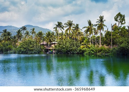 Sea with palm trees and jungle. Koh Chang, Thailand. - stock photo