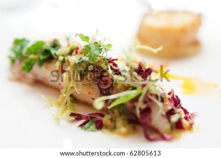 Seabass and squid, haute cuisine, shallow focus depth - stock photo