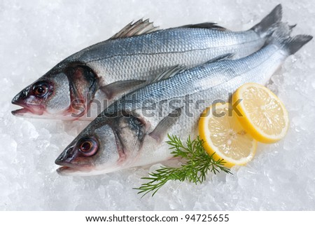 Seabass (Dicentrarchus labrax) on ice at the fish market - stock photo