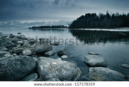 Seacoast in march with stones on the foreground - stock photo