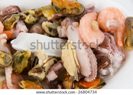 Seafood close-up  background. Exotic food. - stock photo