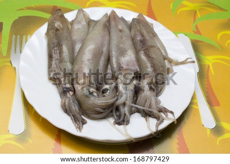 seafood isolated