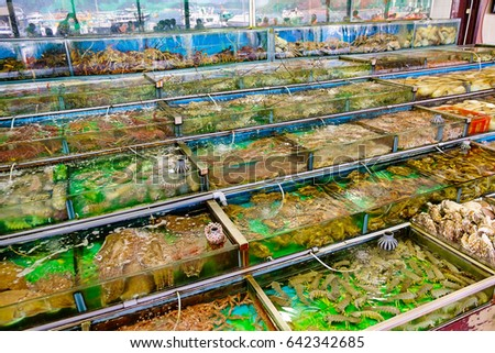 Seafood tank stock images royalty free images vectors for Village fish market
