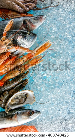 Seafood placed on ice drift - stock photo