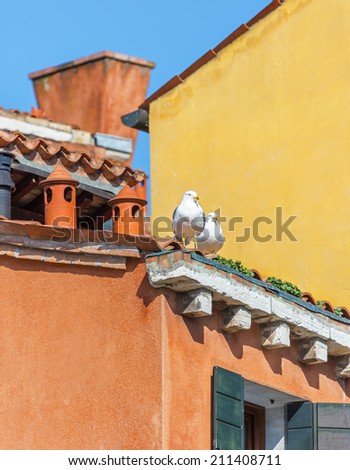 Seagull sits on the chimney pipe of the vinetian church - Venice, Italy