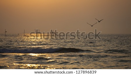 Seagulls flying into the sun - stock photo