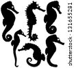 Seahorse silhouettes. Raster version - stock photo