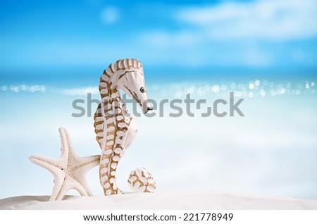 seahorse with white starfish on white sand beach, ocean,   sky and seascape, shallow dof - stock photo