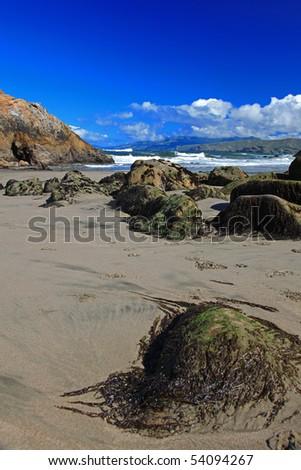 Seal Rocks & Pacific Beach in San Francisco - stock photo