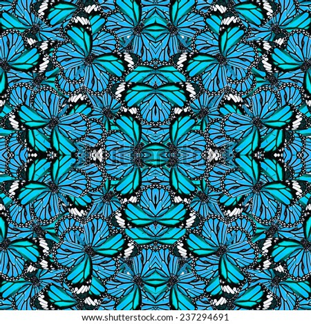 butterfly wing patterns stock images royaltyfree images